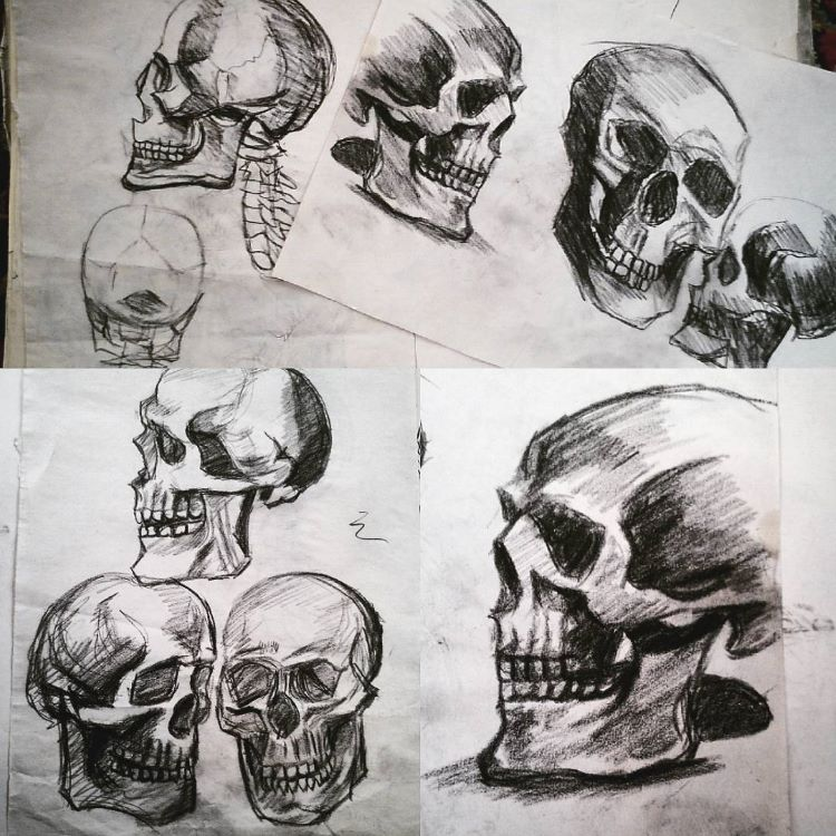 Light skull sketches