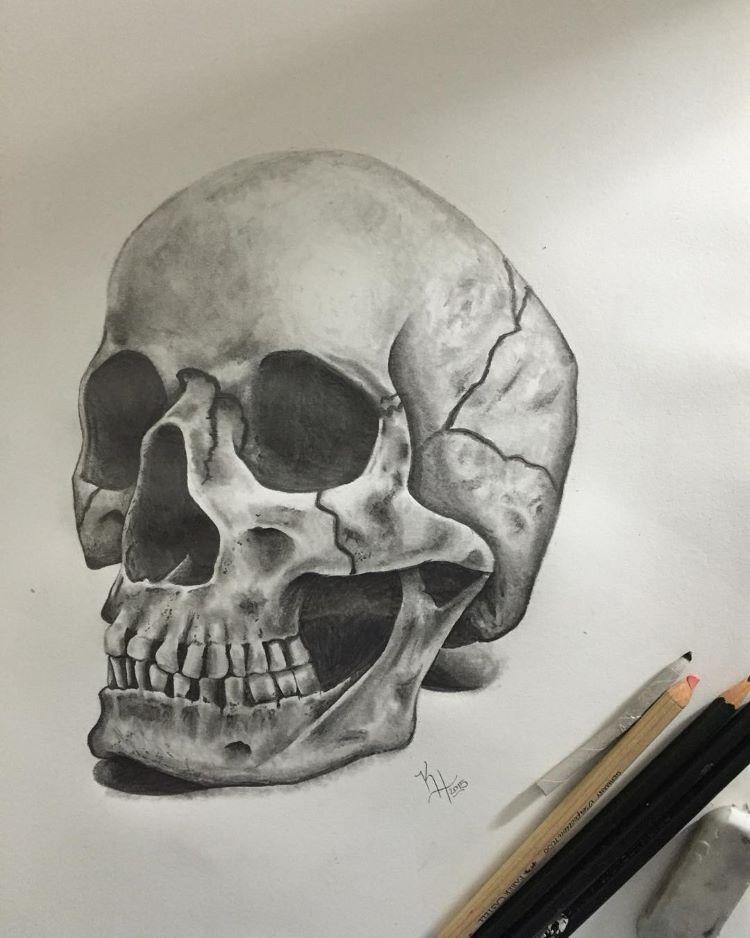 Realistic human skull practice drawings