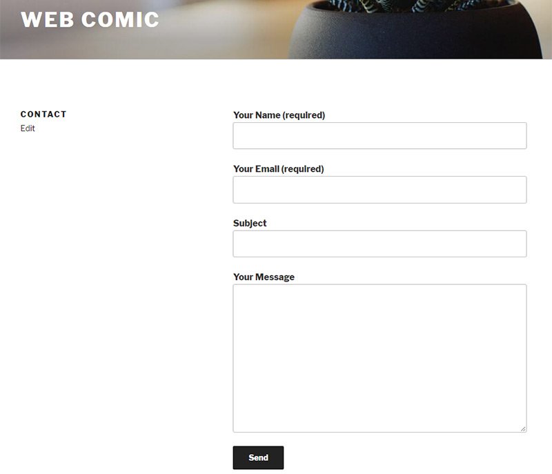 contact form preview